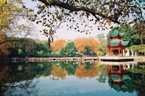 中南大学荷花池